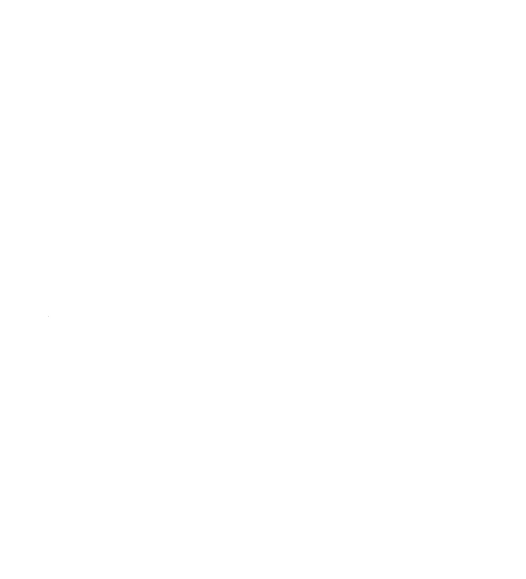 Krav Maga Traditional